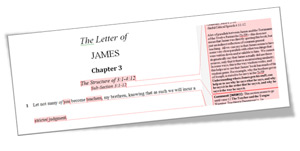 James Chapter 3