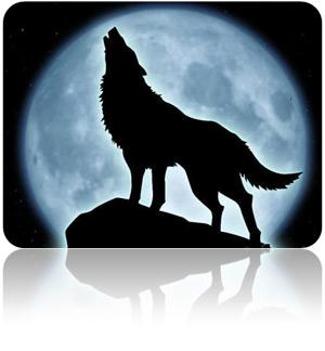 lonewolf-web